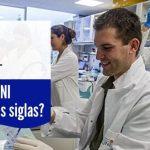 ¿qué es SNI?